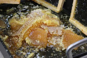 Golden honey comb